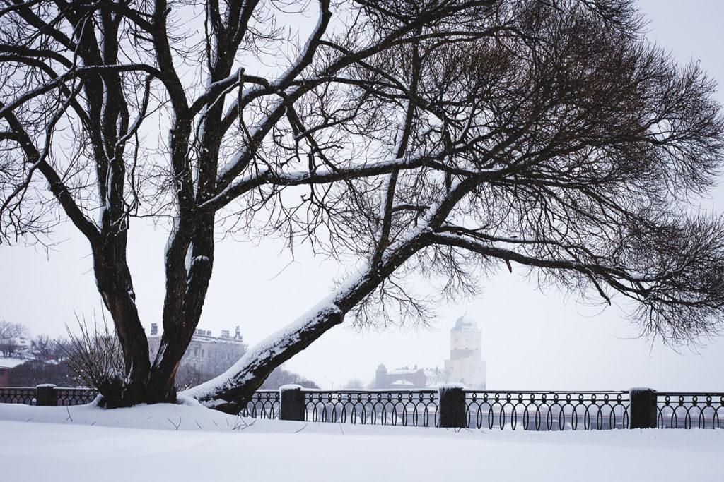 Вид на зимний Выборгский замок со стороны набережной 40-летия Комсомола.